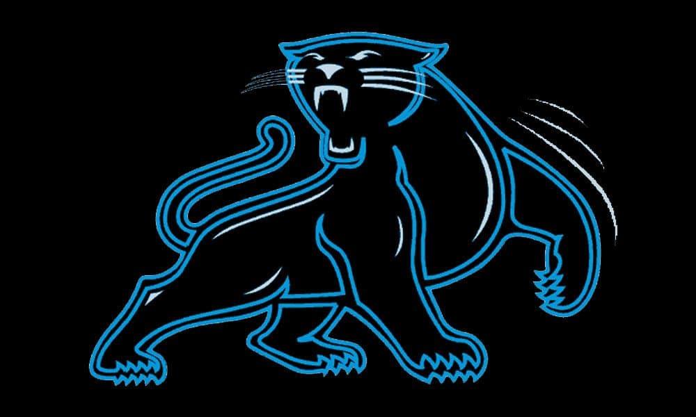 Dynasty Capsule Carolina Panthers Dynasty League Football